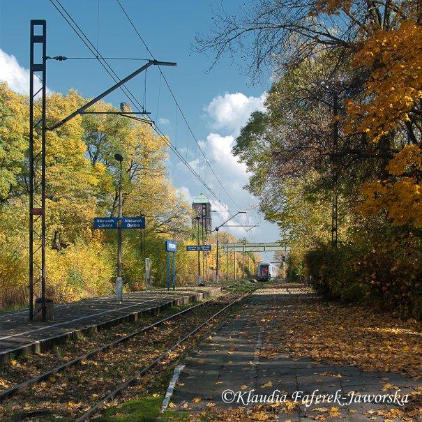 Przejazd pociągu przez stację Bytom Bobrek