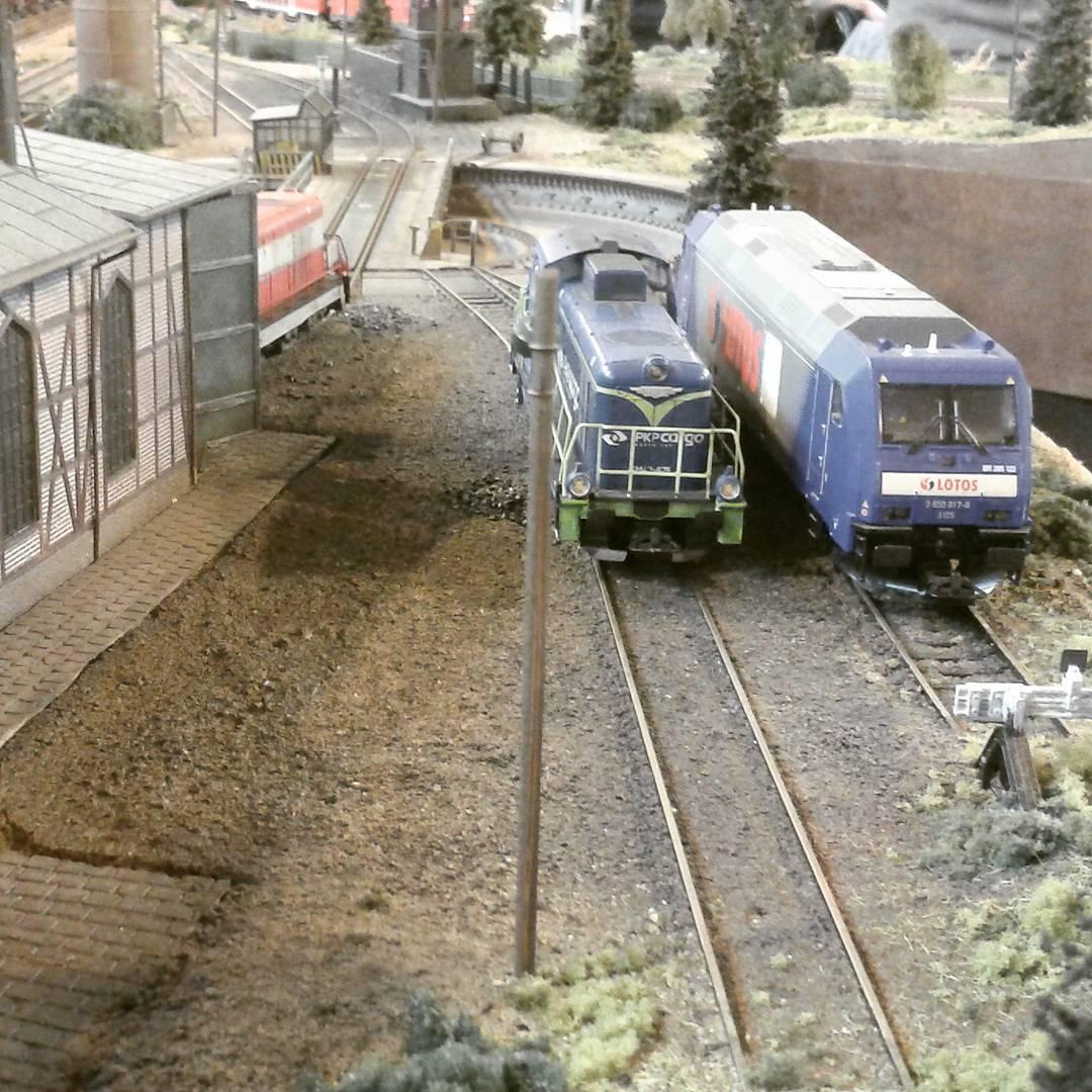 Sosnowiec, Festiwal kolei w miniaturze