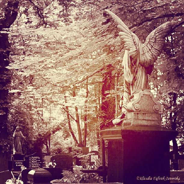 Cmentarz Mater Dolorosa w Bytomiu