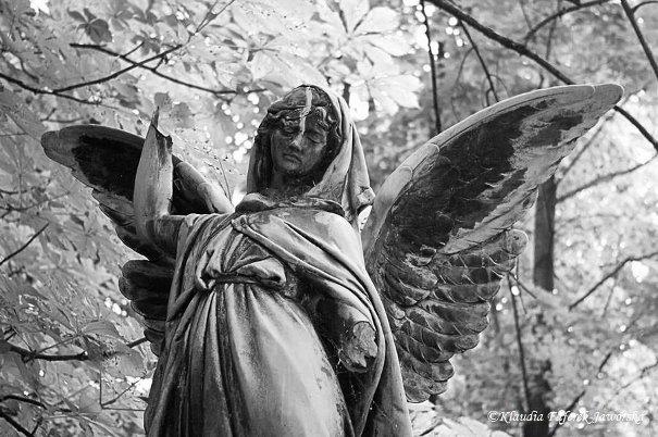 Anioły na cmentarzu w Bytomiu