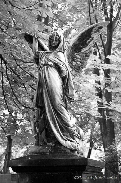 Anioły na cmentarzu